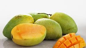 Beberapa manfaat buah mangga untuk  tubuh